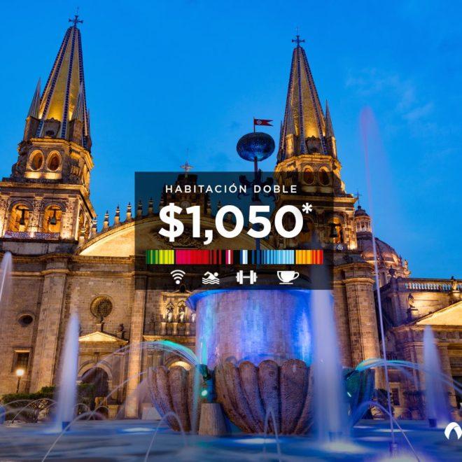 aranzazu arte catedral